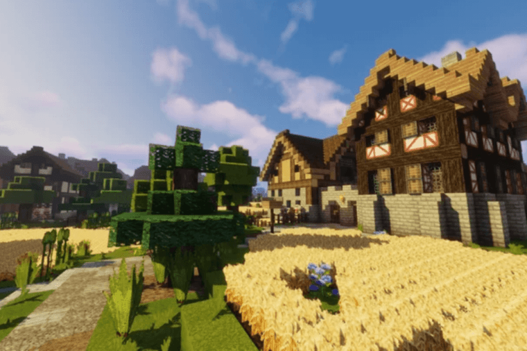 Winthorp Medieval Minecraft Texture Pack.